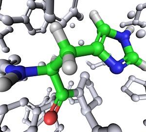 Den essensielle aminosyren Histidin